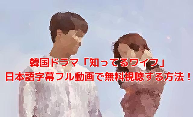 韓国ドラマ「知ってるワイフ」 日本語字幕フル動画で無料視聴する方法!
