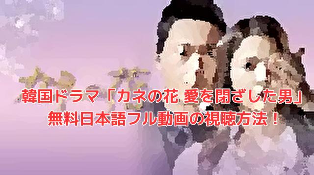 韓国ドラマ「カネの花 愛を閉ざした男」 無料日本語フル動画の視聴方法!