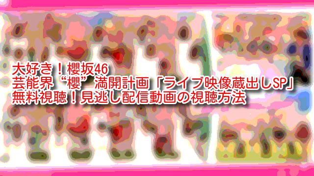 """大好き!櫻坂46 芸能界""""櫻""""満開計画「ライブ映像蔵出しSP」 無料視聴!見逃し配信動画の視聴方法"""